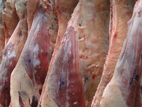 Concurso da ABHB visa fomentar produção de carne de qualidade