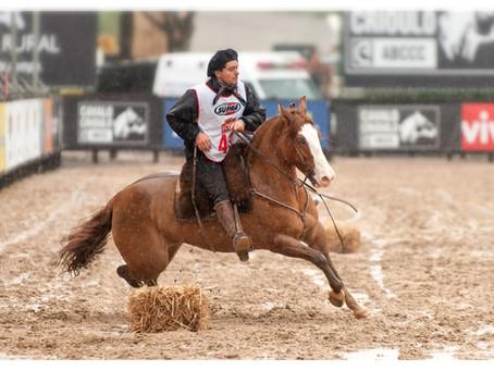 Brasileiros prontos para a Copa do Mundo do cavalo Crioulo