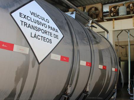 Indústrias lácteas buscam capital de giro para manter recolhimento de leite