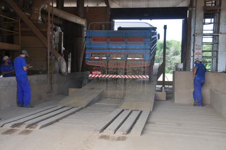 Safra de soja gera mais de 300 empregos temporários na Coagrisol