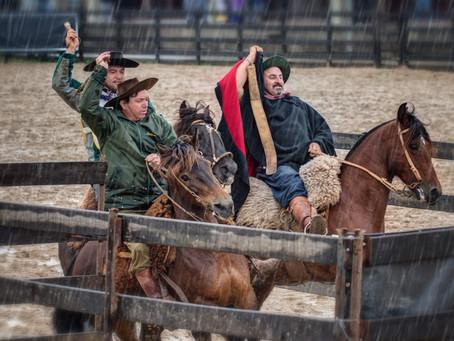 Finais do Cavalo Crioulo movimentam pista no Parque Assis Brasil