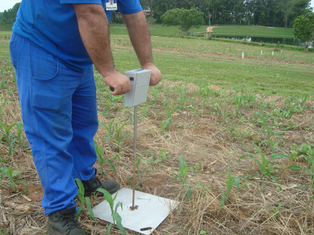 Diagnóstico da lavoura evita problemas de compactação do solo