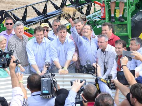 Aberta oficialmente a colheita do arroz no Rio Grande do Sul