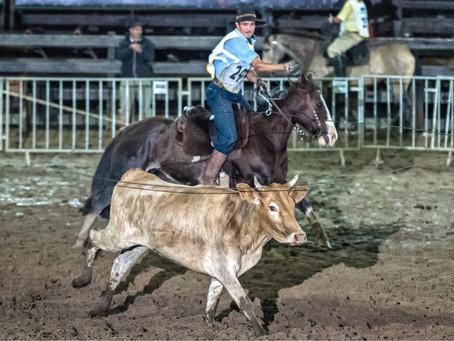Lei reconhece modalidades equestres como Patrimônio Cultural brasileiro