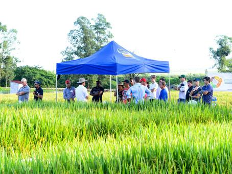 Vitrines tecnológicas atraem atenção do produtor na Abertura da Colheita