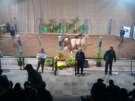 Santa Luzia do Imbuial ultrapassa R$ 400 mil em vendas