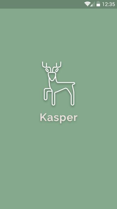 Kasper Safety Solutions