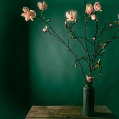 Magnoliasmars2021-4.jpg