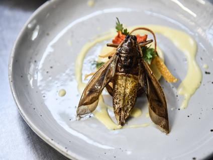 Ученые попробовали заменить сливочное масло жиром из насекомых