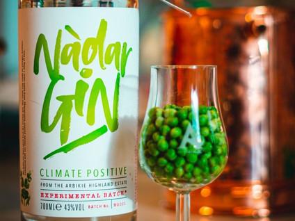 Найден самый экологичный джин