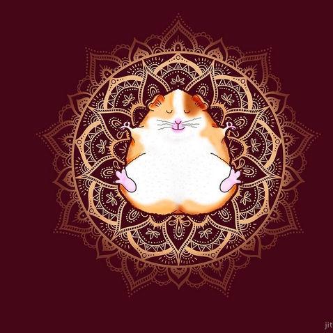 Zen Guinea Pig Meditating Mandala