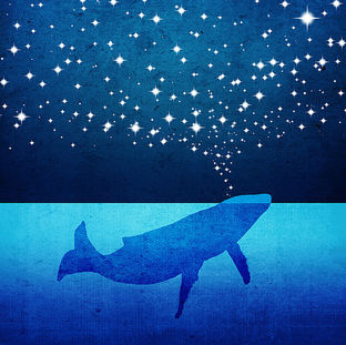 Whale Spouting Stars