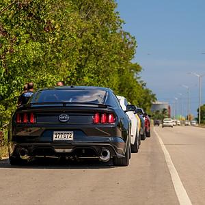 Mustang Invasion