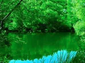 L'œil du lac