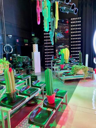 Rabbit One-decor-le-grand-cactus-4.jpg
