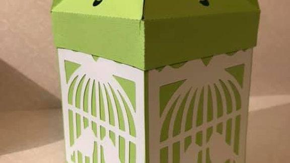 Gift box/card
