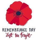 Remembrance-Day-Poppy-Web-488x5091.jpg