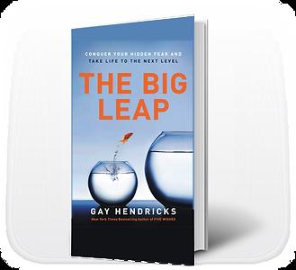 Big Leap_.png