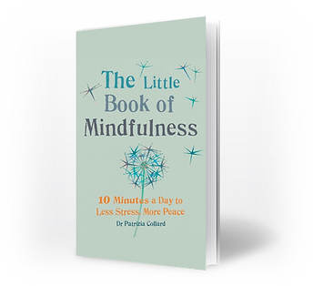 Little Book of Mindfulness.png