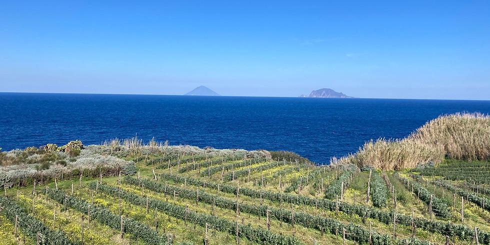 Sicilian TERROIRS 2022