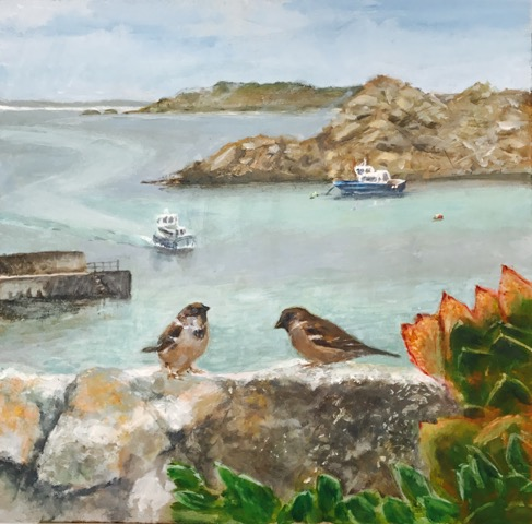 scilly sparrows