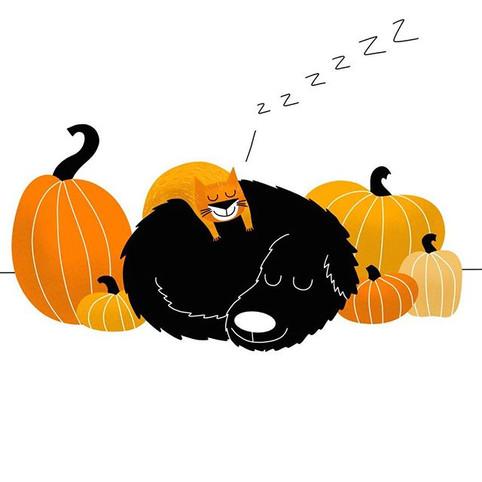 A Fall Nap