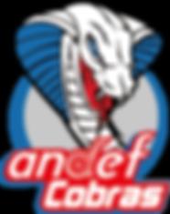 logotipo Andef Cobras.png