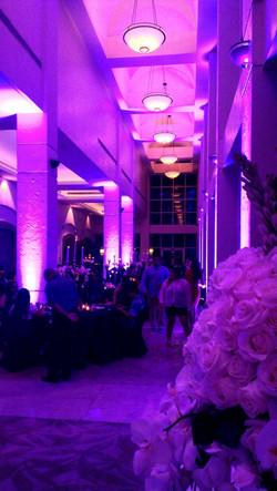 Hyatt Wedding 2013