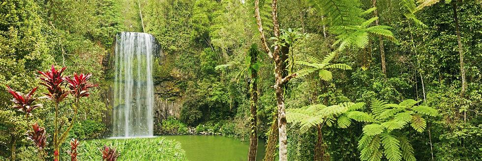 ecoturismo_edited.jpg