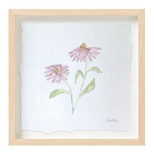 """Coneflower Watercolor"" 9x9"