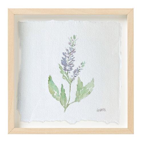 """""""Sage Watercolor"""" 9x9"""