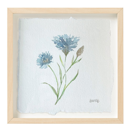 """Cornflower Watercolor"" 9x9"