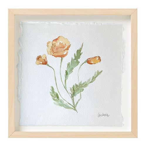 """Poppy Watercolor"" 9x9"