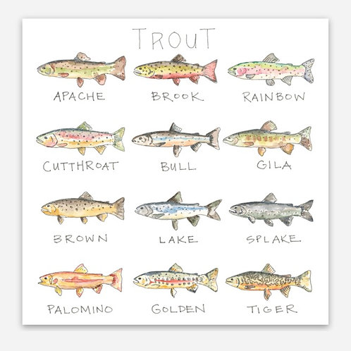 """""""Trout Life Story"""" Sticker"""