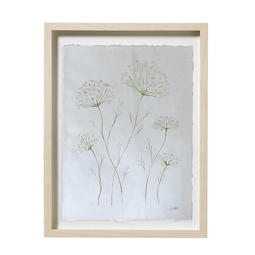 """Queen Anne's Lace Watercolor"" 16x20"