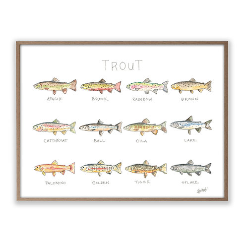 """""""Trout Life: A Watercolor Story""""  Print"""