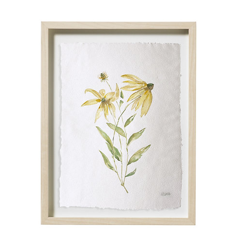 """Black-Eyed Susan Watercolor"" 16x20"