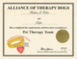 Rufus Alliance of Therapy Dogs Certificate