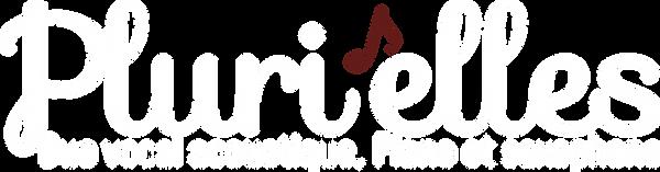 Plurielles Duo Acoustique, groupe musical, animation
