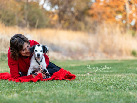 Quick Tips from a Pet Photographer