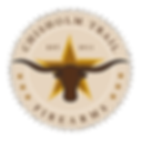 Gun Store in Burleson TX DFW