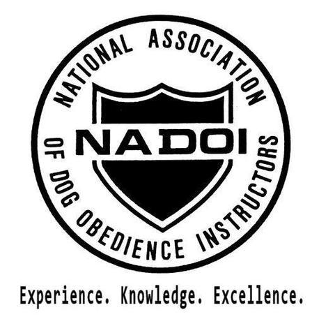 NADOI logo.jpg