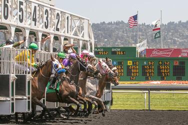 Golden Gate Fields Race Track