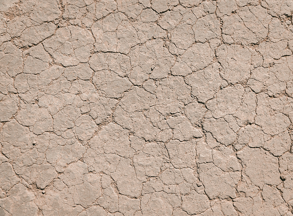 avoid dry skin with argan oil