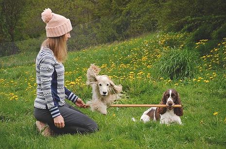 Magni og hundene.jpg