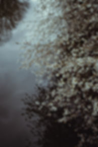 naturephotography-prints for sale (16).j