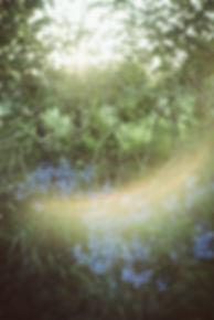 naturephotography-prints for sale (25).j