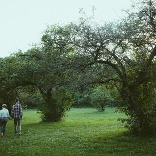 fotografia par - dolnyslask (14).jpg