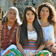 WILLKASARA MEDICINE FAMILY