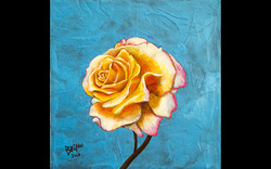 Rose On Electric Blue